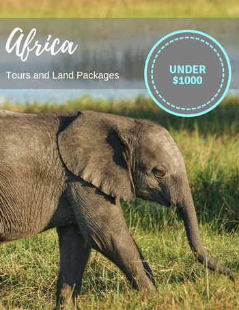 Africa tours and land packages under $1000